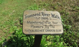 Townsend River Walk sign